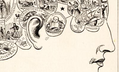 Litteraturens framtid: Romanens anatomi
