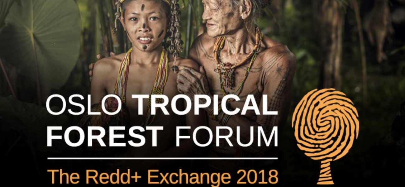 Oslo Tropical Forest Forum