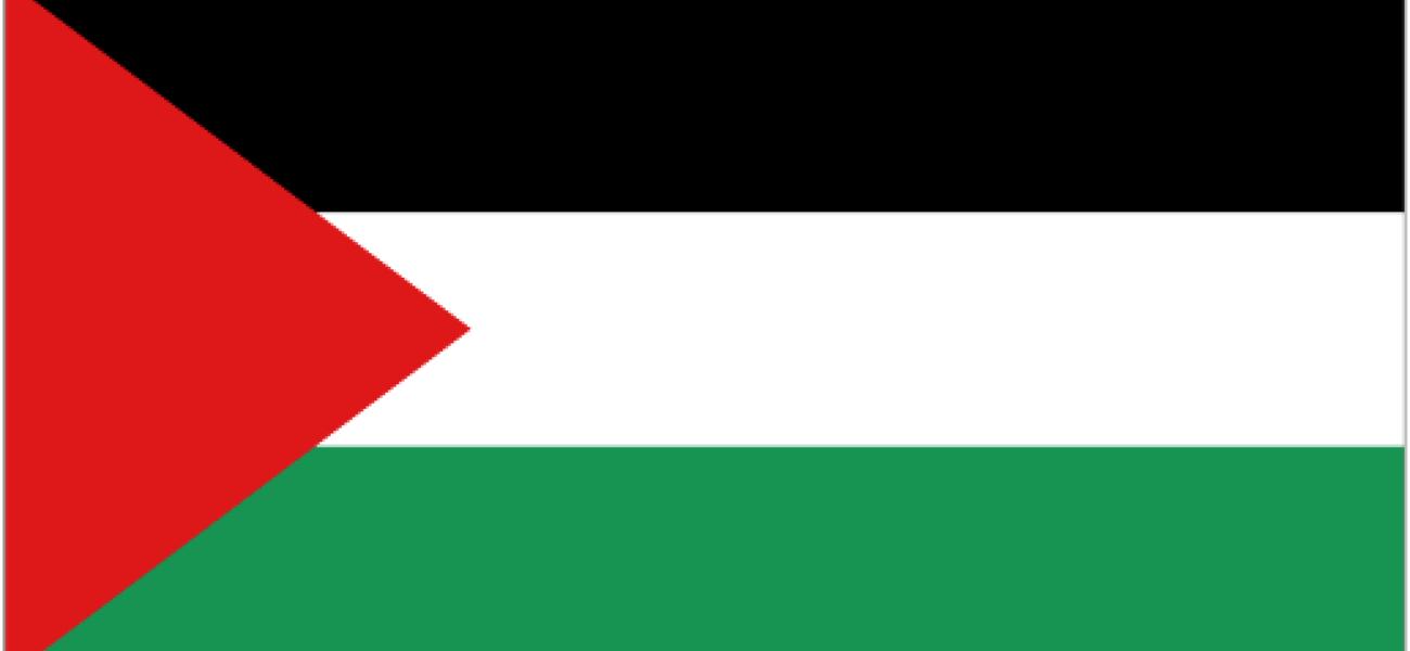Palestina og ICC - konsekvenser og muligheter?
