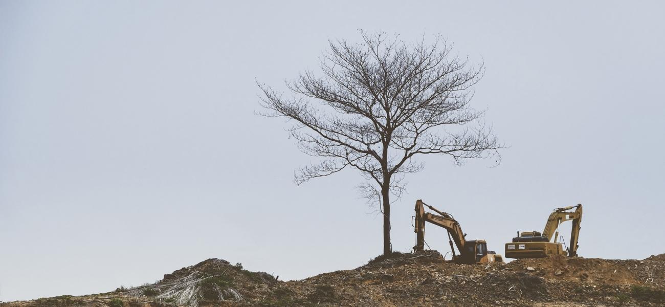 Miljøets manglende rettsvern