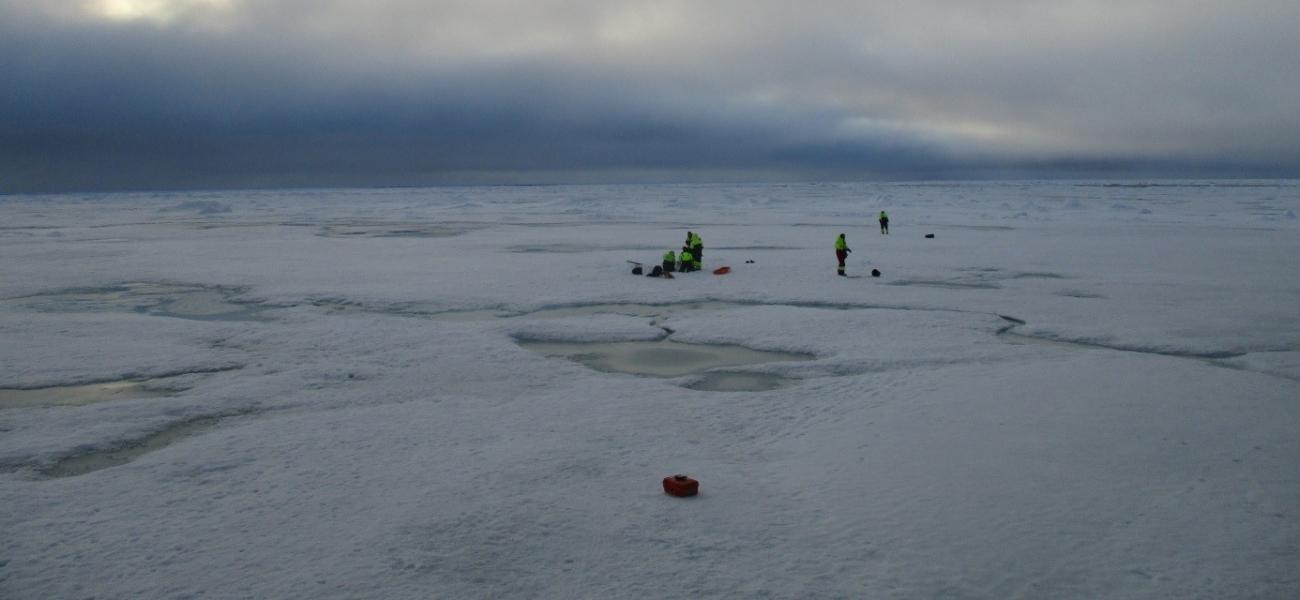 Kunnskap fra isødet