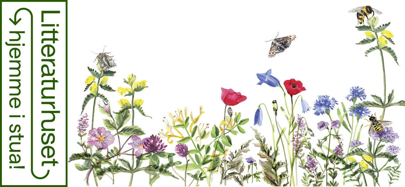 En vill hage