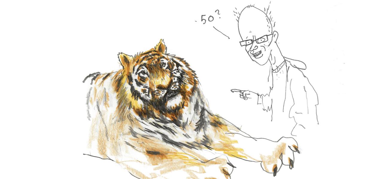 Hvor gammel blir en tiger?