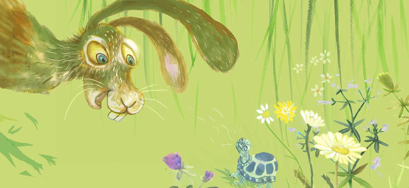 Haren og skilpadden / Zając i żółw